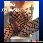TSXXL-Angel23x6